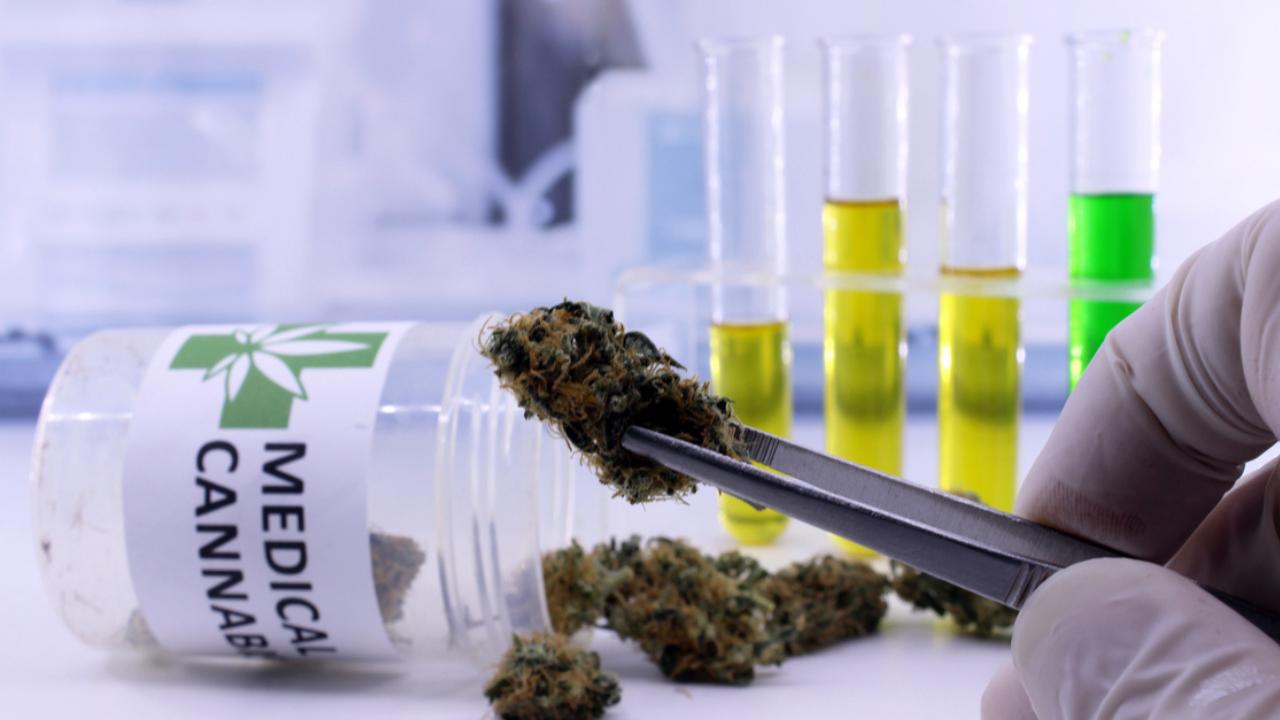 Zamiana surowca konopi medycznych Cannabis flos Aurora na ten sam, ale o innych parametrach nie jest wskazana i lepiej jej nie dokonywac.